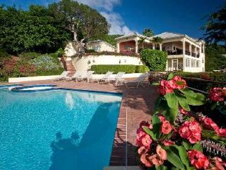 Ventana - Luxurious Mansion on 2 Acres - Prestigious Neighborhood - Saint Thomas vacation rentals