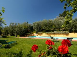 House in Florence (Villa 4757) - Paphos vacation rentals
