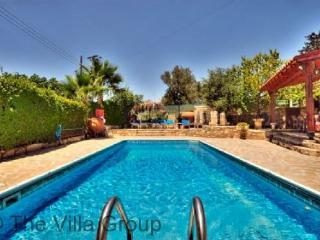 Amazing House in Paphos (Villa 449) - Pano Arodes vacation rentals