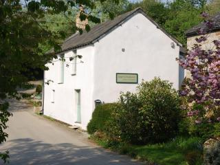 Granary Cottage - Newquay vacation rentals