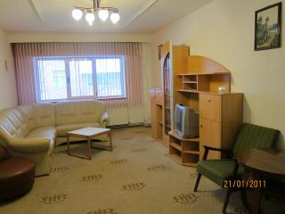 Grand Central 1 Apartment Sibiu - Romania vacation rentals