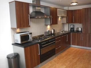 Free Parking, Luxury 2 Bed, 2 Bath in City Center - Edinburgh vacation rentals