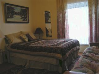 THE little big SUITE - Queen Size Bed  - THE great new SUITE - MINI APARTMENT at SUSAN'S - Niagara Falls - rentals