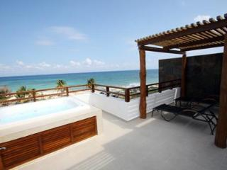 Heavenly Beachfront PH with Striking Views - Nubes - Playa del Carmen vacation rentals