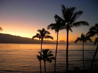 Stunning Sun Rise viewing from lanai and inside condo - Romantic Ocean Views, Only $185 nt-  Ocean Front Maalaea Kai - Wailuku - rentals