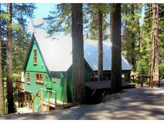 Winter Way Cabin with Hot Tub - Pinecrest vacation rentals