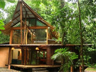 Casa Auratus - nested in the wildlife refuge of Gandoca-Manzanillo - Limon vacation rentals