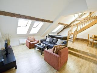 Spacious Attic Two Levels  Apartment with two BR - Prague vacation rentals