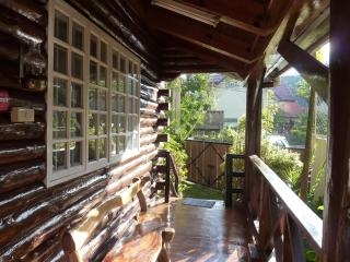Luxurious Mountain Log Cabin in Baguo City - Philippines vacation rentals