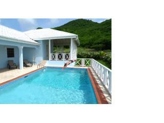 outdoorpoolleft - RELAX - ENJOY - EXPERIENCE - FFRYES VILLA  ANTIGUA - Saint Mary - rentals
