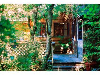 cabinentrance2 - Westcott Woods - A San Juan Island Waterview Cabin - Friday Harbor - rentals