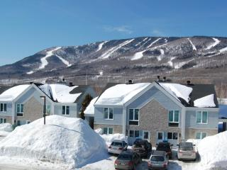 GOLF & SKI Villa at MONT-SAINTE-ANNE commute to LE MASSIF - Quebec City vacation rentals