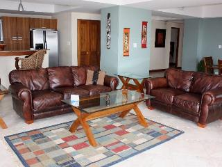 Ocean  front, 3000 sq.ft, 6th floor,3 bed /4 bath - Jaco vacation rentals