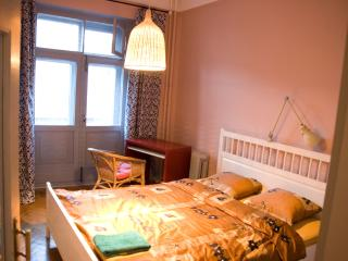 Zamorenova Apartment ID 144 - Central Russia vacation rentals