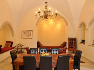 Stunning Vacation Rental  in centre  of Jerusalem - Jerusalem vacation rentals