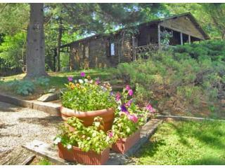 Hudson Valley Cabin - Hudson Valley vacation rentals