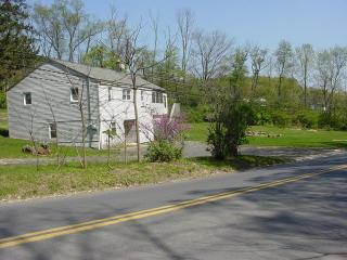 POCONOS WEST MOUNTAIN HOUSE - Danville vacation rentals