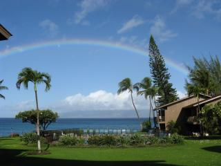 Just another day in paradise! - 3B Oceanfront - Polynesian Shores Condominium - Lahaina - rentals