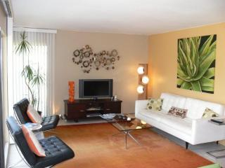 Mid-Century Modern Fabulous! - Palm Springs vacation rentals