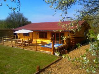 Honey Lodge - Log burner, Hot tub & Tree House - Blean vacation rentals