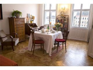 Living room - Vienna Feeling - Apartment Victoria - Vienna - rentals