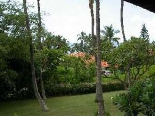 ScaledImage22 - Awesome Ocean View - Beautiful 2 BR Maui Condo - Wailea - rentals