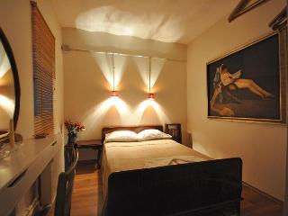 Ideal flat for 2 people at the center of Istanbul - Istanbul vacation rentals