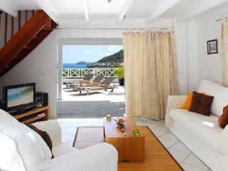 Villa Mahogany with excellent views from every room, pool & close to beach - Flamands vacation rentals