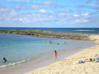 Newly Listed & Upgraded - Tropical Paradise - Haleiwa vacation rentals
