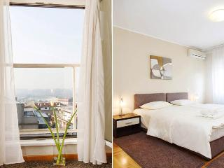 2 Bedroom Apartment MOSCOW with a RIVER VIEW! - Belgrade vacation rentals