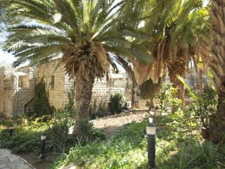Exclusive Penthouse next to King David hotel in Jerusalem (KF) - Israel vacation rentals