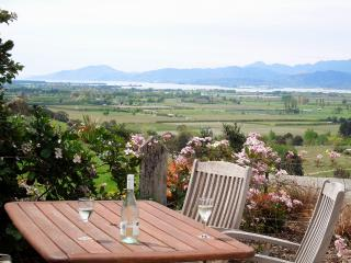 The Best View in Nelson and a Swimming Pool! - Richmond vacation rentals