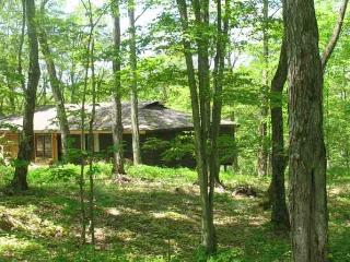 Maple Arbour -  living lightly on the earth - Haliburton vacation rentals