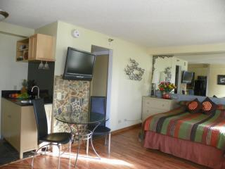 Awesome Studio,Great Location,Huge Saving! - Honolulu vacation rentals