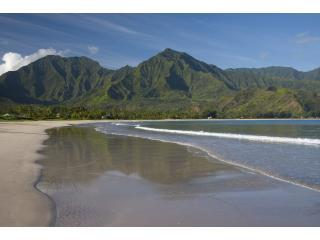 CRW 5070 - 5- Star Tropical Elegance at the Hanalei Bay - Hanalei - rentals