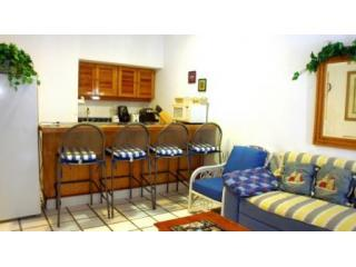 Living-Bar-Jun08.JPG - Spacious 1 Bedroom Condo Close to Ocean (Pm-S8) - Playa del Carmen - rentals
