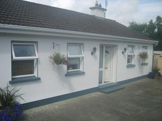 Brielle House Self-catering Accommodation - County Laois vacation rentals