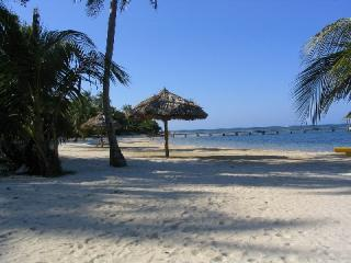 Palmetto Bay\'s beach - Villa Serena, Habitat of the Stars - Roatan - rentals