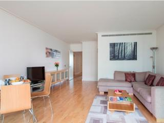 South Quay 2Bed Apartments with Gym & Pool - London vacation rentals