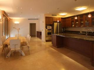 super luxury vacation rental ! 5 br in mamila - Jerusalem vacation rentals