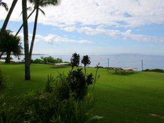 KIHEI BEACH, #107* - Kihei vacation rentals