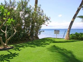 KIHEI BEACH, #110* - Kihei vacation rentals