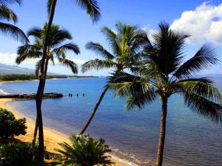 KIHEI BEACH, #509* - Kihei vacation rentals