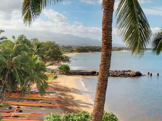 KIHEI BEACH, #510* - Kihei vacation rentals