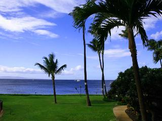 MAALAEA SURF, #C-8* - Kihei vacation rentals
