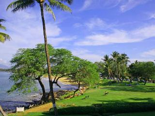 ROYAL MAUIAN, #309^ - Kihei vacation rentals