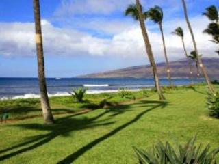 SUGAR BEACH RESORT, #130 - Image 1 - Kihei - rentals