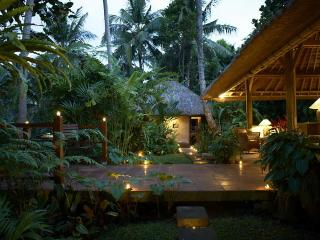 Villa Sungai - rivertop villa in central Ubud - Ubud vacation rentals