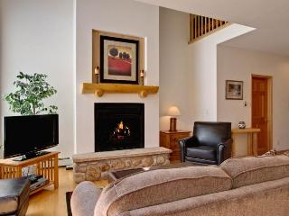 Pines 101 Ski-in-out 4 BR - Breckenridge vacation rentals