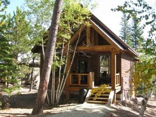 Frontier Cabin - Lead vacation rentals
